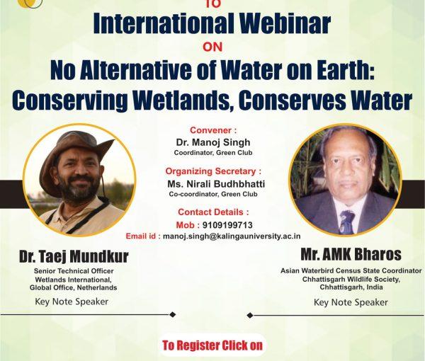 World WetlandsDay Flyer-1